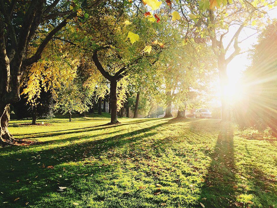 Siekiant suvaldyti grėsmes, keičiasi tvarka parkuose ir kitose viešose erdvėse